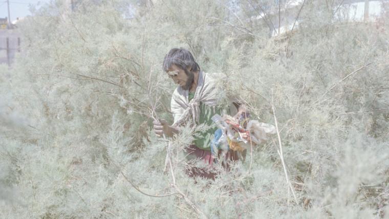 Hashem Shakeri