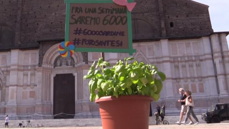 6000 Piantine crowdfunding Bologna