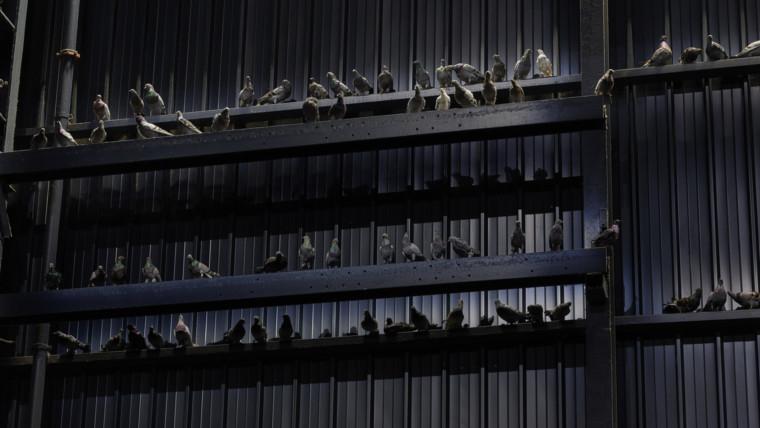 "Maurizio Cattelan, ""Ghosts"" in mostra al Pirelli HangarBicocca"